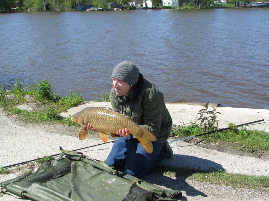 Michigan, Illinois Sign Invasive Carp Prevention Agreement