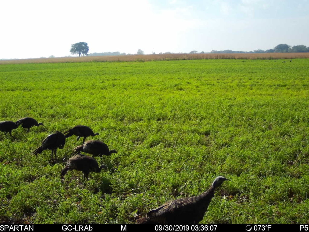 NWTF Article in their newsletter:   Arrow Setup Made Easy